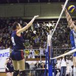 foto volley 7